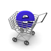 Ecommerce Solutions, Customization, Shopping Cart Hosting